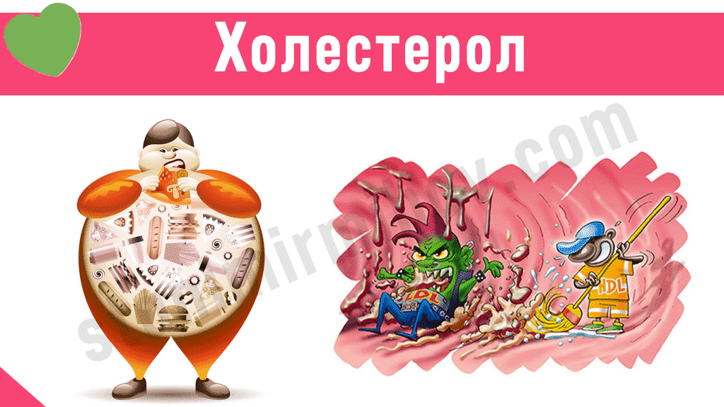 Холестерол
